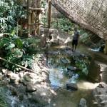 Het Heijderbos Jungle Dome