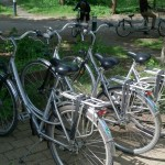 Het Heijderbos fietsen