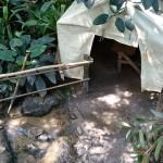 Het Heijderbos Jungle Dome spelen
