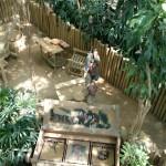 Het Heijderbos Jungle Dome voor kinderen