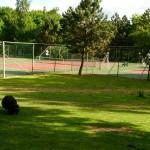 Het Heijderbos tennisterreinen