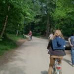 Het Heijderbos fietsen in het park