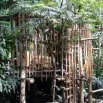 Het Heijderbos Jungle Dome avontuur